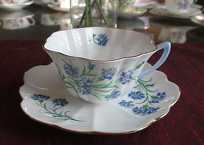 SHELLEY Fine Bone China   **CORNFLOWER ** #2413  Stratford Shape