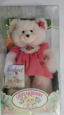 Fisher Price Briarberry Collection Soft Bear