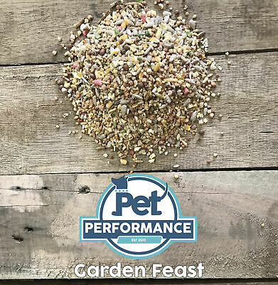 12.55kg Super Premium Wild Bird Seed - All Season Mix With Mealworms & Suet Pell