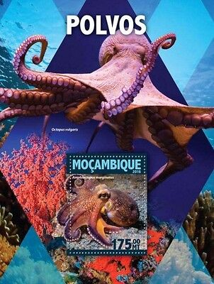 Z08 IMPERFORATED MOZ16121b MOZAMBIQUE 2016 Octopus MNH