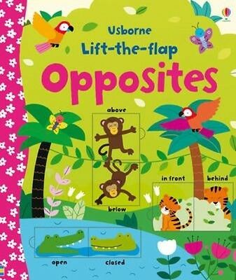 Lift-the-flap Opposites by Felicity Brooks Board Books Book