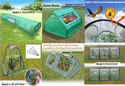 Awesome Hot Mini Large Small Greenhouse Planting Gardening Flower Portable Green House Home Interior And Landscaping Oversignezvosmurscom
