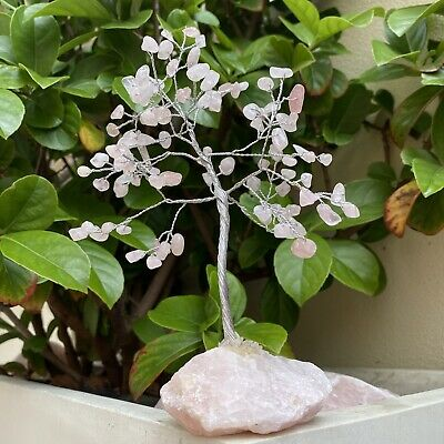 Rose Quartz Tree From Brazil (Rose Quartz Chips / Rose Quartz Base)