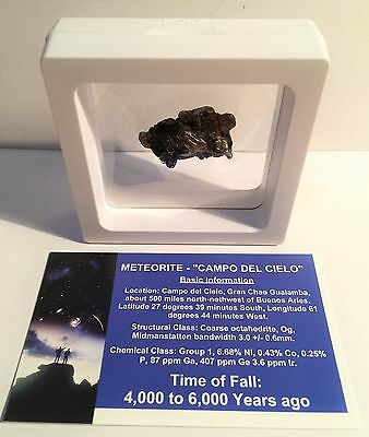 """""""RARE"""" 17.3 Gram Meteorite """"Campo Del Cielo"""" Museum Quality with stand and Cert"""