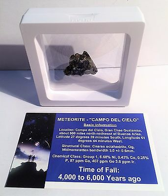 """""""RARE"""" 15.9 Gram Meteorite """"Campo Del Cielo"""" Museum Quality with stand and Cert"""