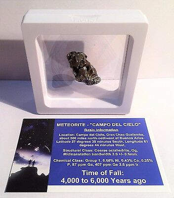 """RARE"" 18.2 Gram Meteorite ""Campo Del Cielo"" Museum Quality with stand and Cert"