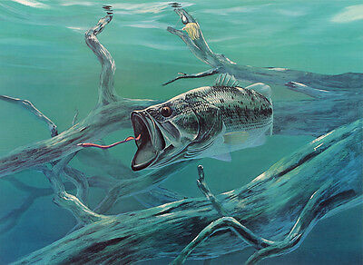 Home deco Wall art HD Print Fish on fishing Oil painting Printed on canvas L258