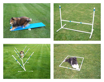 Agility Gear Starter Package ( Medium to Large Dogs ) - Dog Agility Equipment