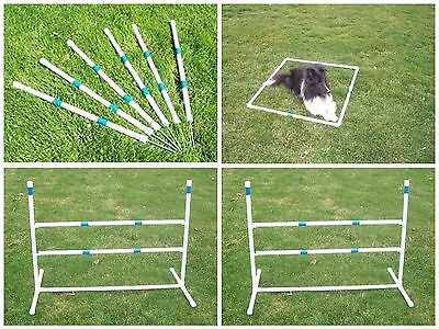 Agility Gear Outdoor Practice Set - II  - Dog Agility Equipment