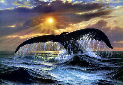 Home deco wall art Canvas Print Whale tail Oil painting on canvas L317