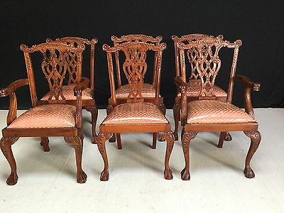 6 Exquisite Chippendale Style Chairs Pro French Polished & Upholstered