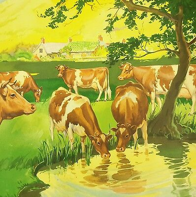 Vtg Guernsey Cow Poster California Dairy Industry 25x17 Farm House Pond Scene