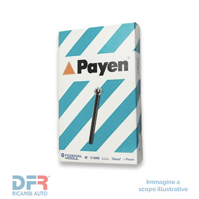 1 PAYEN Kit bulloni testata BERLINGO BERLINGO Furgonato BX BX Break C15 DISPATCH