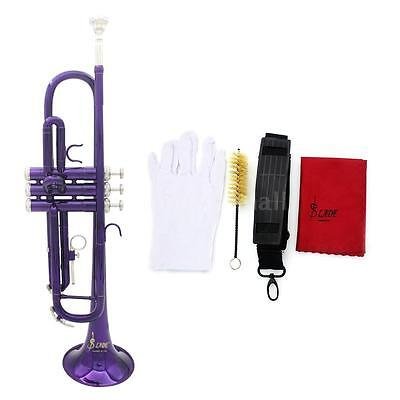 High Quality Bb Beginner Trumpet Purple +Care Kit+Case For Student H3E7