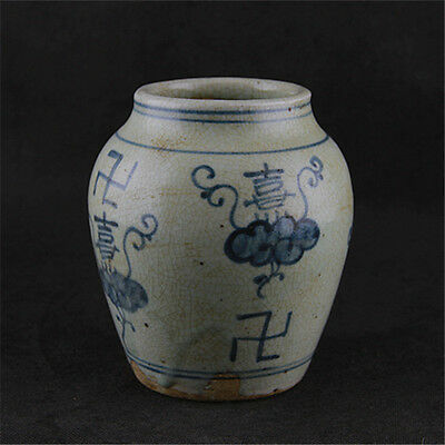 Chinese Asian Blue and White Antique Porcelain Pot Decorated Old Jar #1