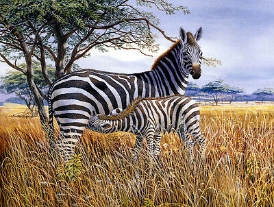 Wall art home Deco Zebras on the prairie Oil Painting HD Printed on canvas L791