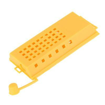 10Pcs Plastic Queen Bee Cages Isolator Beekeeper Outils d'apiculture avec