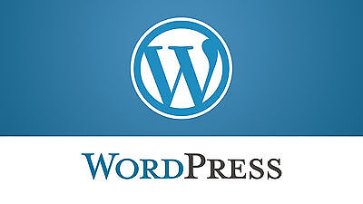 Wordpress Support - Wordpress install - Wordpress migration - Theme instalation