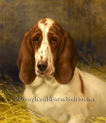 A Basset Hound ~ Maud Earl, Dogs ~ Cross Stitch Pattern