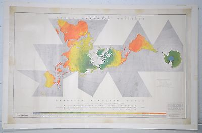 Spaceship Earth Dymaxion Airocean World Map Poster Buckminster Fuller Raleigh