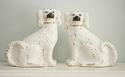 A Dignified Pair of Antique c19th Staffordshire Wally Dog Spaniels, Fine Tails
