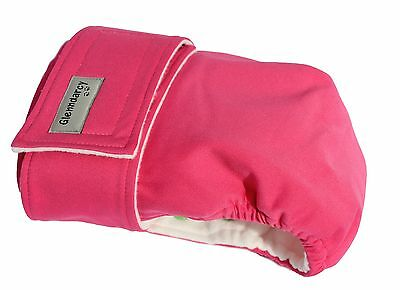 Glenndarcy Adjustable No Tailhole 'Smarty Pants' Nappy I Frenchies | Bulldog