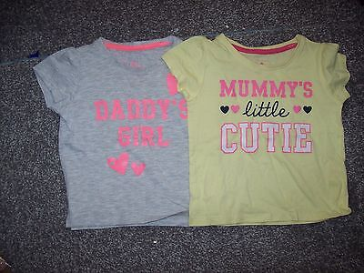 Two Baby Girls Tee Shirts 12-18 Months