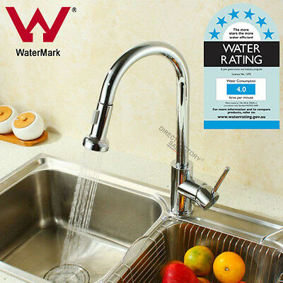 WELS Pull Out Spray Swivel Kitchen Sink Mixer Tap Laundry Basin Faucet Brass