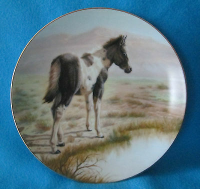 The Pinto Collectible Plate by Perillo Vague Shadows # 2 in the Colt series