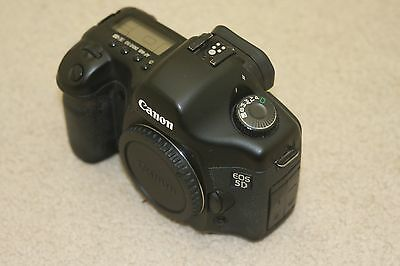 Canon 5D - DSLR Camera - 12.8 MP