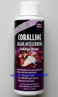 Coralline 118ml MICROBE-LIFT Alpes CALCAIRES BOOSTER kalkrotalgen 92,37€/ L