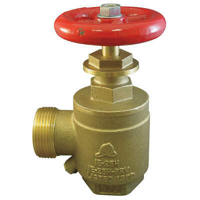 MOON AMERICAN Angle Valve,2.5 In FNPTxMNH,Brass,Rising, 170-2521