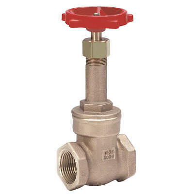 MILWAUKEE VALVE Gate Valve,Class 125,2-1/2 In.,FNPT, 148 2-1/2""