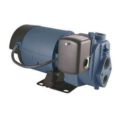 FLINT & WALLING 1 HP Convertible Jet Pump,110ft Lift, EK10