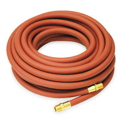 REELCRAFT Hose Assembly,3/4 In.,75 ft. L, 601026-75