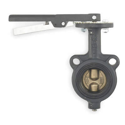 MILWAUKEE VALVE Butterfly Valve,Wafer,2 1/2 In,CI,EPDM, CW223E 2 1/2