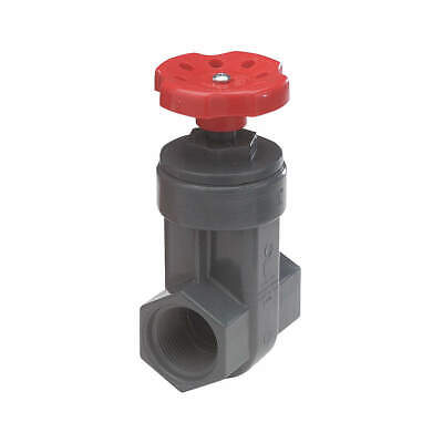 NDS Gate Valve,1-1/4 In.,FNPT, GVG-1250-T