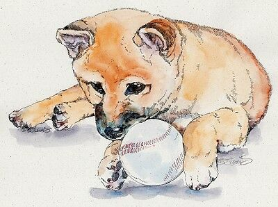 SHIBA INU Original Watercolor on Ink Print Matted 11x14 Ready to Frame