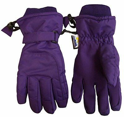 N'Ice Caps Adults Unisex Extreme Cold Weather 80 Gram Thinsulate Winter Ski G...