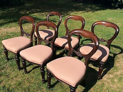 Set Six Balloon Back Dining Chairs