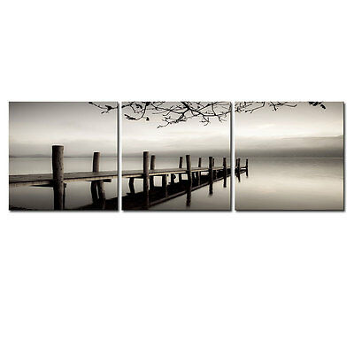 Painting Canvas Picture Wall Art Photo Poster Landscape Bridge Lake 3PCS Framed