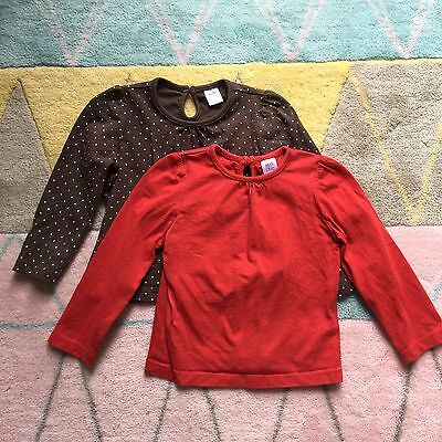2 Girls Long Sleeved Tops, Size 9-12 Months