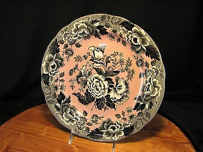 Spode Archive Collection British Flowers POPPY-  Dinner Plate 10.5""