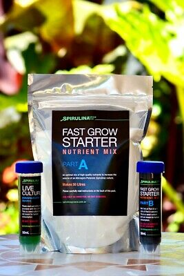 Spirulina starter culture (50ml) – easily grow your own fresh superfood at home.