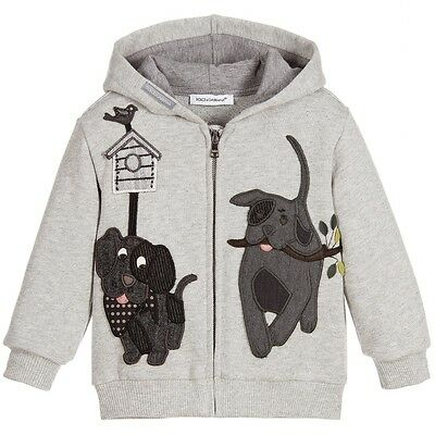 Dolce And Gabbana Baby Grey Dg Family Zip-Up Hooded Top 12-18 Months