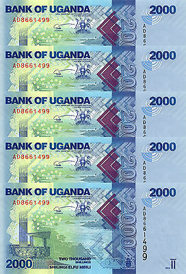 LOT, Uganda 2000 Shillings (2010) p50 x 5 PCS UNC