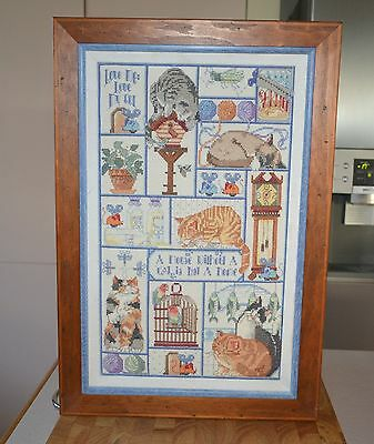 51.5 x 35cm Very Fine Stitched Embroidery Cat Motif Sampler Beautiful Wood Frame