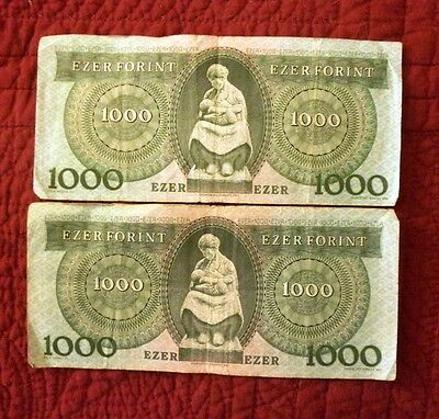 Hungary paper currency - Ezer Forint 1000 Notes