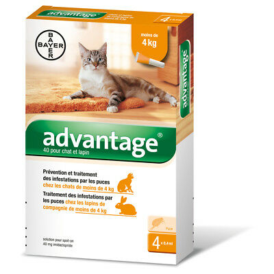 Bayer - Pipettes Antiparasitaires Advantage 40 pour Chat/Lapin - 4x0,4ml