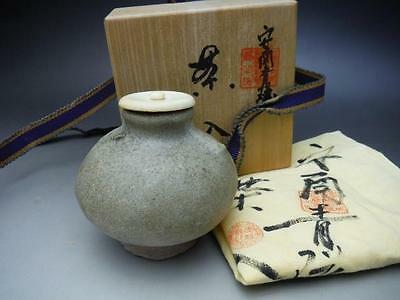 Japanese Tea ceremony Annan ware Tea caddy (Chaire) Porcelain Celadon 1128ht01